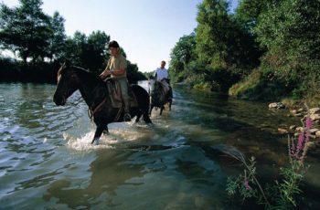 horses_tenuta_casabianca